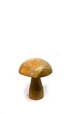 Teak mushrooms - Small 20cm