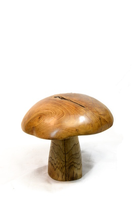Teak mushrooms - Medium 25cm