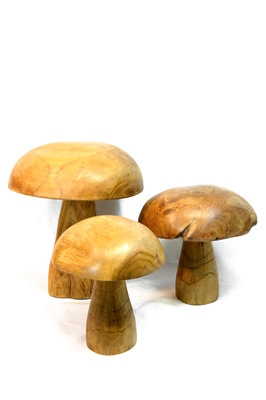 Teak mushrooms - Set of 3