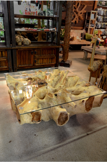 Teak root coffee table with glass top - Square 100cm - Bleached